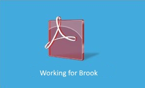 Working for Brook.jpg